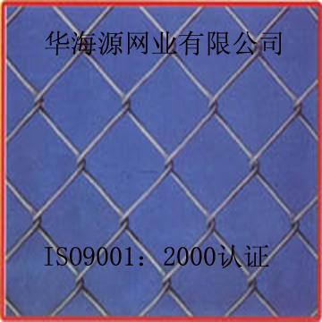 菱形金網(8)